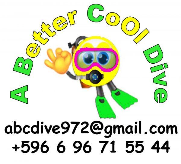 OK logo plongeur ABC Dive scaled