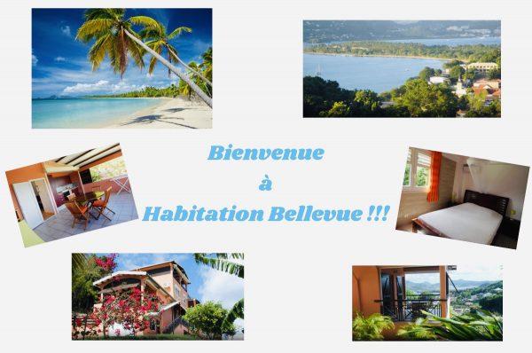 habitat° bellevue