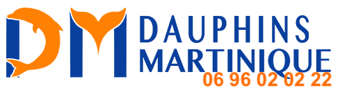 logo3 1 2