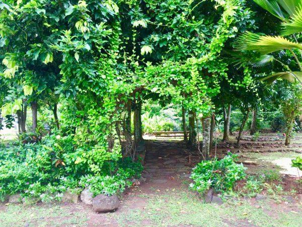 sud botanique